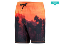 Falcon Zwemshort | Palm