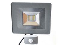 DreamLED Floodlight + Sensor (30 W)