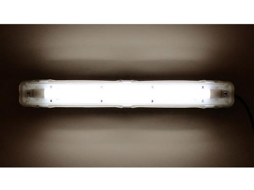 lamp en licht online