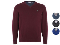 Lacoste Pullover | 100 % Baumwolle