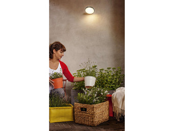 Philips Tuinlamp Moon | LED