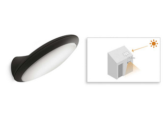 Philips Tuinlamp Raven | LED