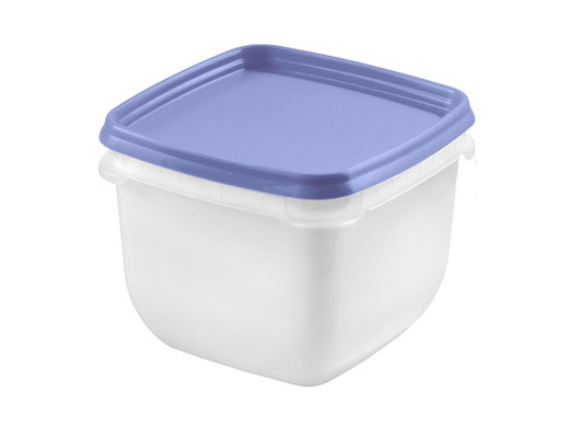 Kühlschrank Aufbewahrungsbox : 4 x orthex aufbewahrungsbox 0 75l internets best online offer