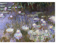 Waterlelies | Monet (60x80)