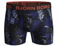 Boxershort Palm Art | Heren