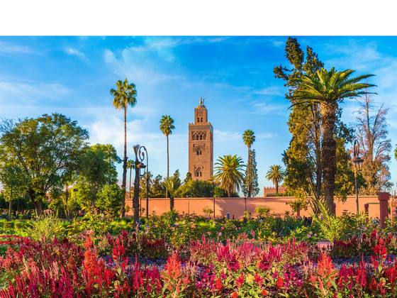4-, 5- of 6-Daagse Stedentrip Marrakech incl. Retourvlucht