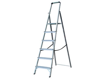 Lyte ENPL6 Ladder