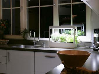 LED's Light Indoor-Kräutergarten | 14 W | 850 lm