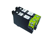 2x Cartridge voor Epson T1291