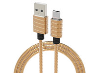 2x RVS Spring Wire USB-C | 1 m | Gold