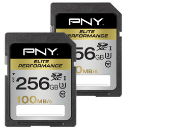 2x SDXC Elite Performance | 256 GB