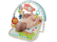 Fisher-Price 3-In-1 Gym Speelkleed