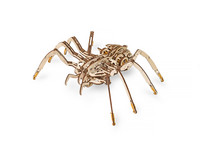 Model drewniany Eco-Wood-Art Spider
