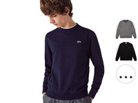 Lacoste Sweater | Classic Fit